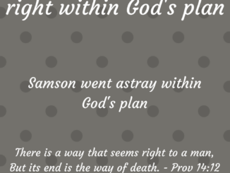 Going astray within God's plan