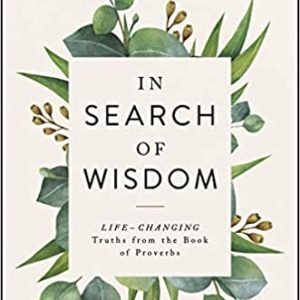 Book review: in search of wisdom by Joyce Meyer